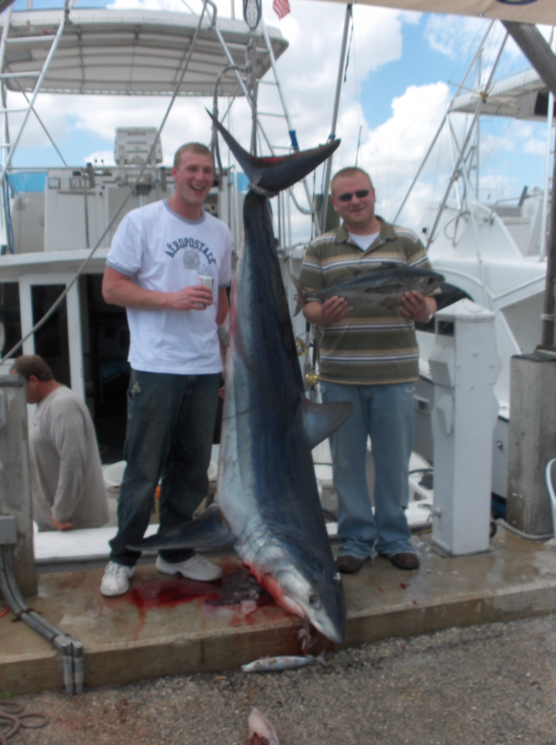 Ft lauderdale shark fishing charter for Fishing spots in fort lauderdale